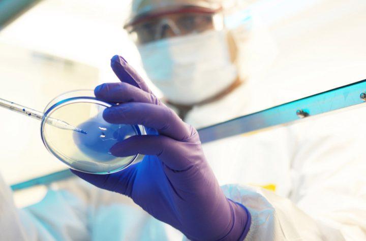 What makes a drug company truly innovative?